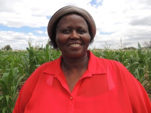 Bubbi Aphane with her GM maize crop.