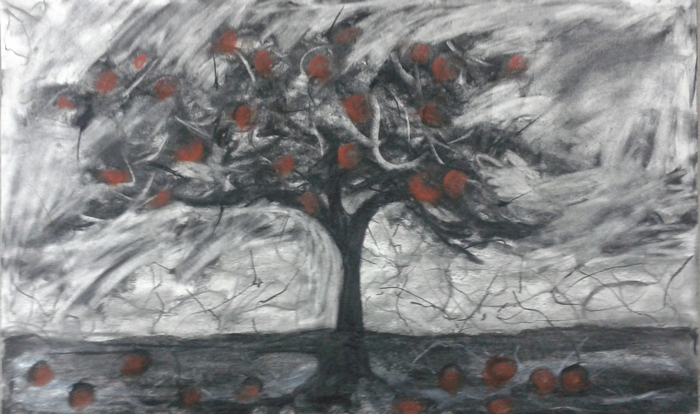 Mokgalo (Buffalo Thorn) II, Charcoal and Pastel, 65x70cm, 2015