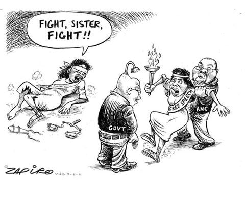Zapiro image3